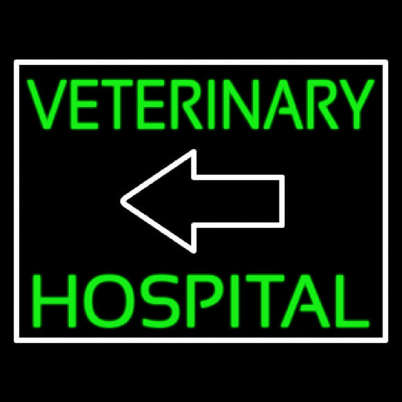 Veterinary Hospital With Arrow Neon Sign