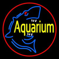 Aquarium Shark Logo Red Circle Neon Sign