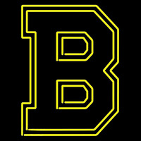 Boston Bruins 1934 To 1948 Logo NHL Neon Sign Neon Sign
