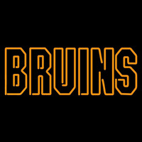 Boston Bruins Wordmark 1995 96 2006 07 Logo NHL Neon Sign Neon Sign