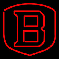 Bradley Braves Team Neon Sign Neon Sign