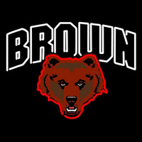 Brown Bears Team Neon Sign Neon Sign