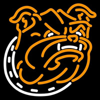 Bryant Bulldogs Alternate 2005 Pres Logo NCAA Neon Sign Neon Sign
