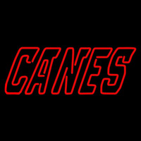 Carolina Hurricanes Wordmark 1997 98 2007 08 Logo NHL Neon Sign Neon Sign
