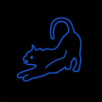 Cat Care Neon Sign
