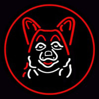 Dog Grooming Red Oval Neon Sign