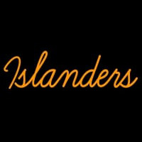 New York Islanders Wordmark Pres Logo Nhl Neon Sign Neon Sign