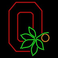 Ohio State Buckeyes Alternate Pres Logo NCAA Neon Sign Neon Sign