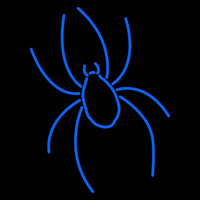 Richmond Spiders Primary 2002 Pres Logo NCAA Neon Sign Neon Sign
