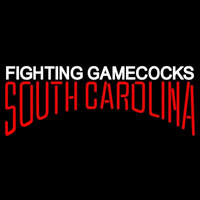 South Carolina Gamecocks Wordmark 2002 Pres Logo Ncaa Neon Sign Neon Sign